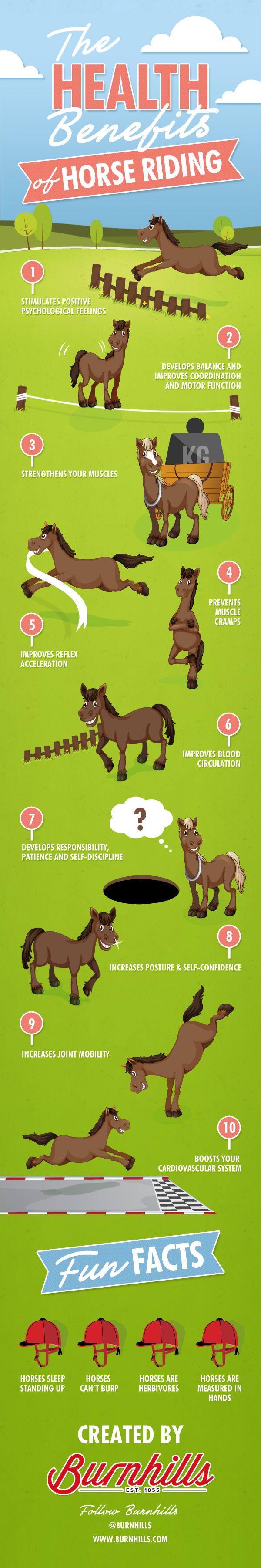 Burnhills-infographic