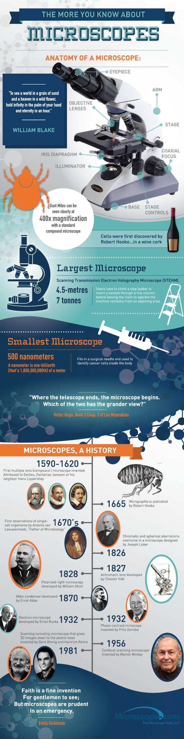 microscopeinfographic_med